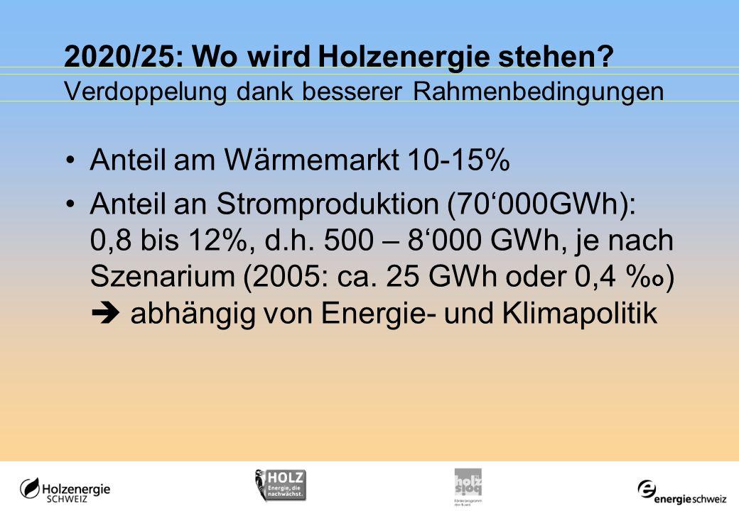 2020/25: Wo wird Holzenergie stehen