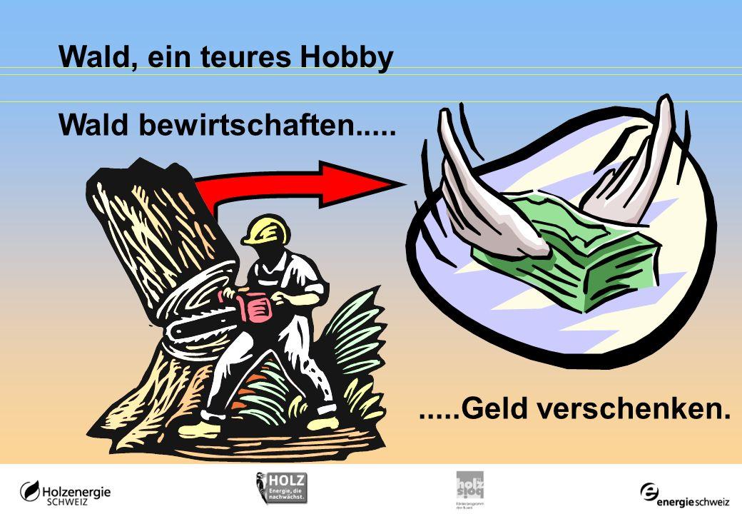 Wald, ein teures Hobby Wald bewirtschaften..... .....Geld verschenken.