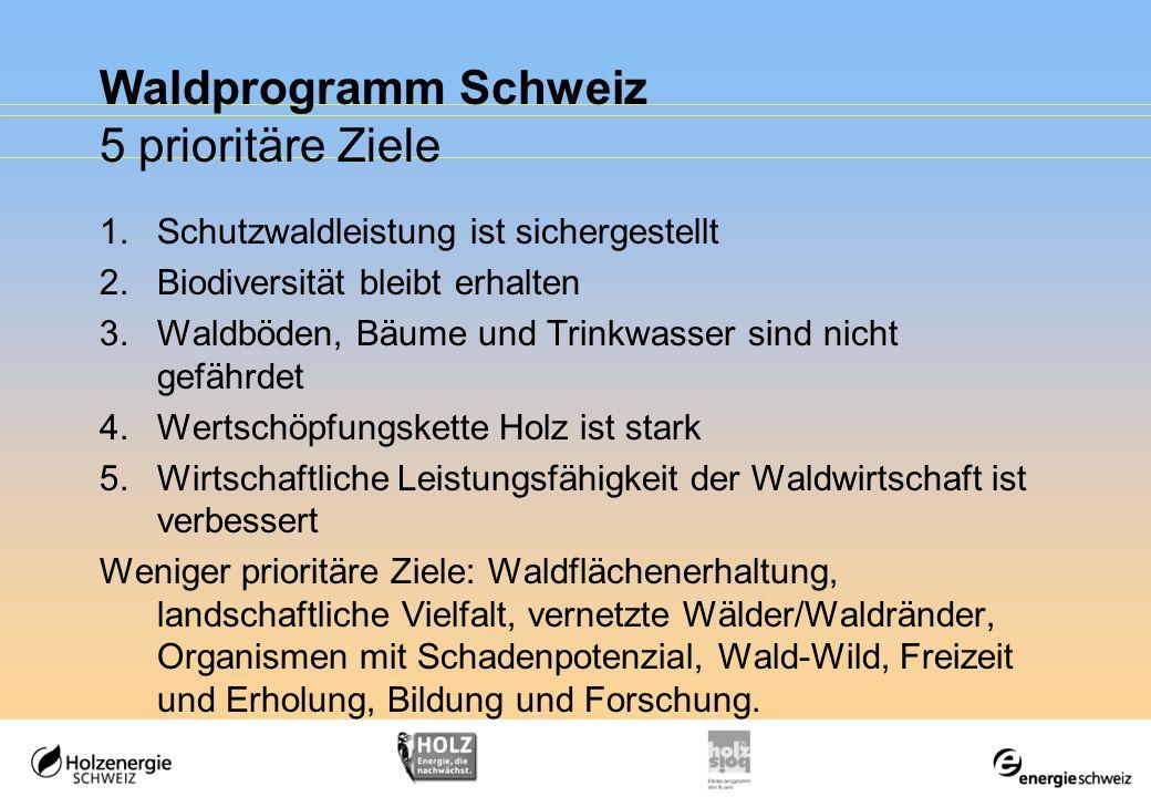 Waldprogramm Schweiz 5 prioritäre Ziele