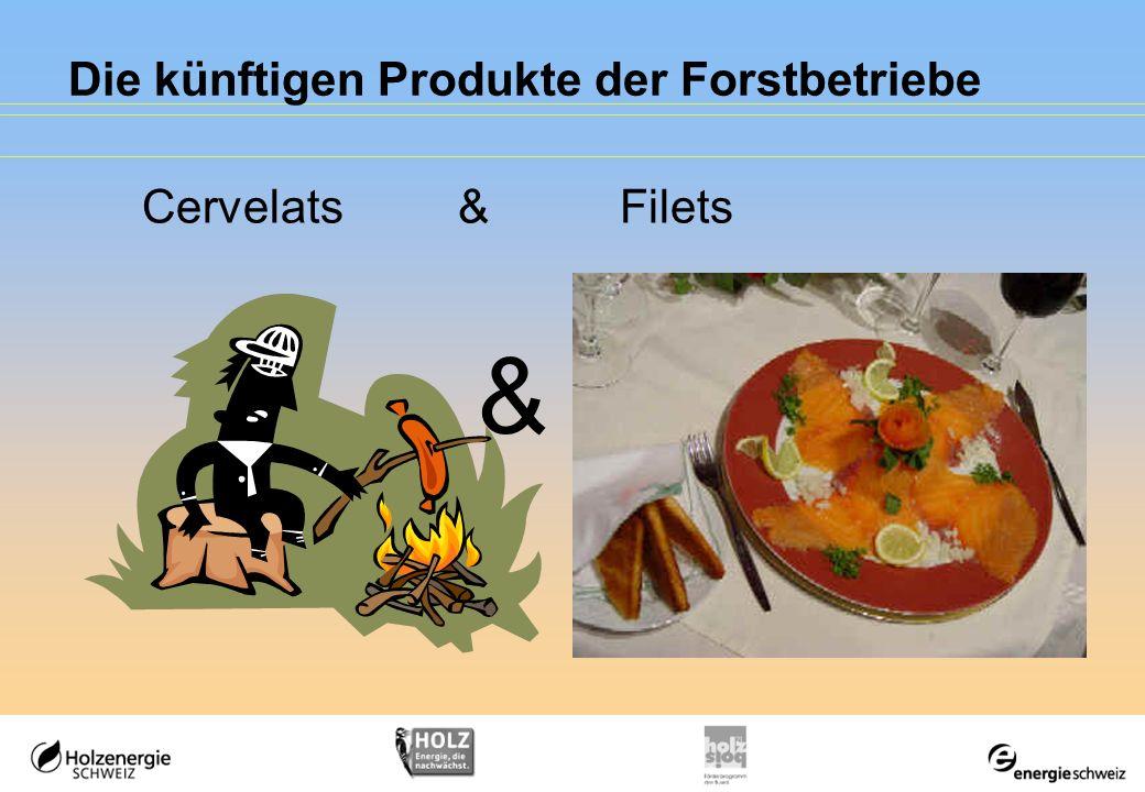 Die künftigen Produkte der Forstbetriebe