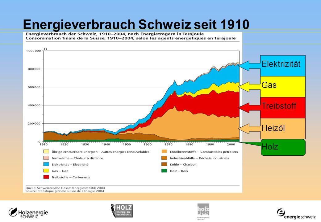 Energieverbrauch Schweiz seit 1910