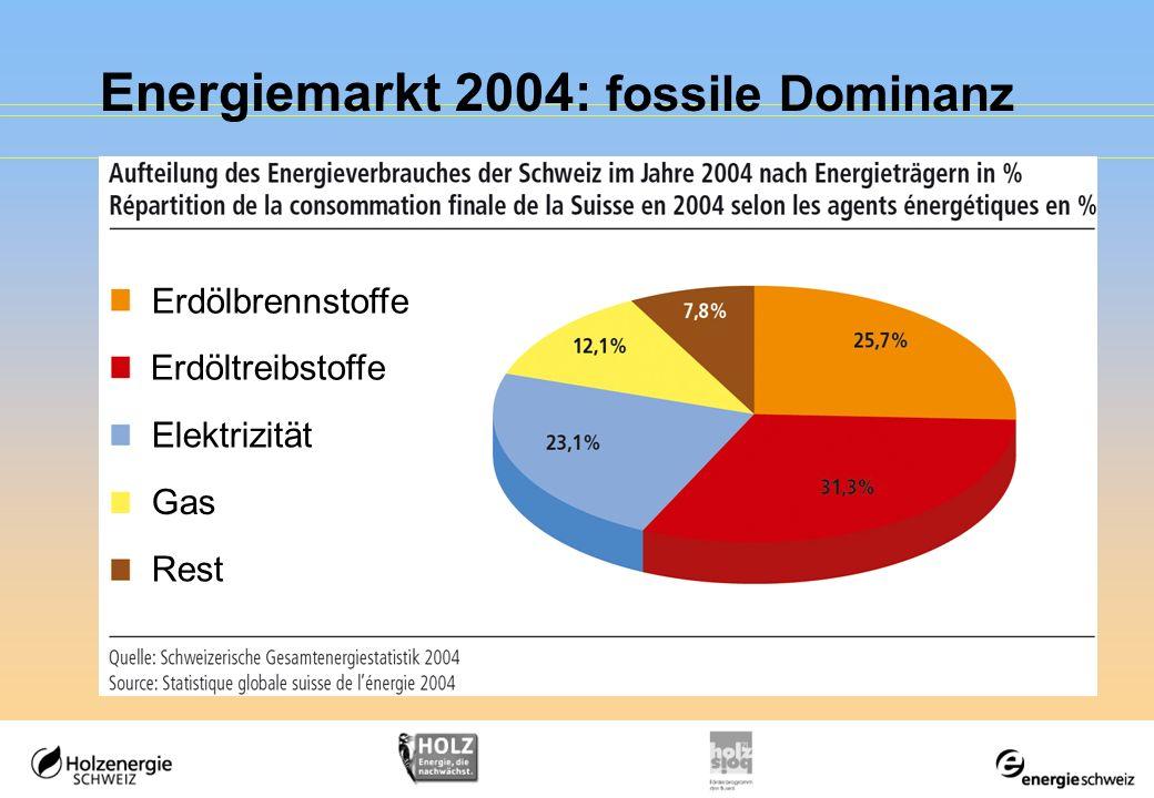 Energiemarkt 2004: fossile Dominanz