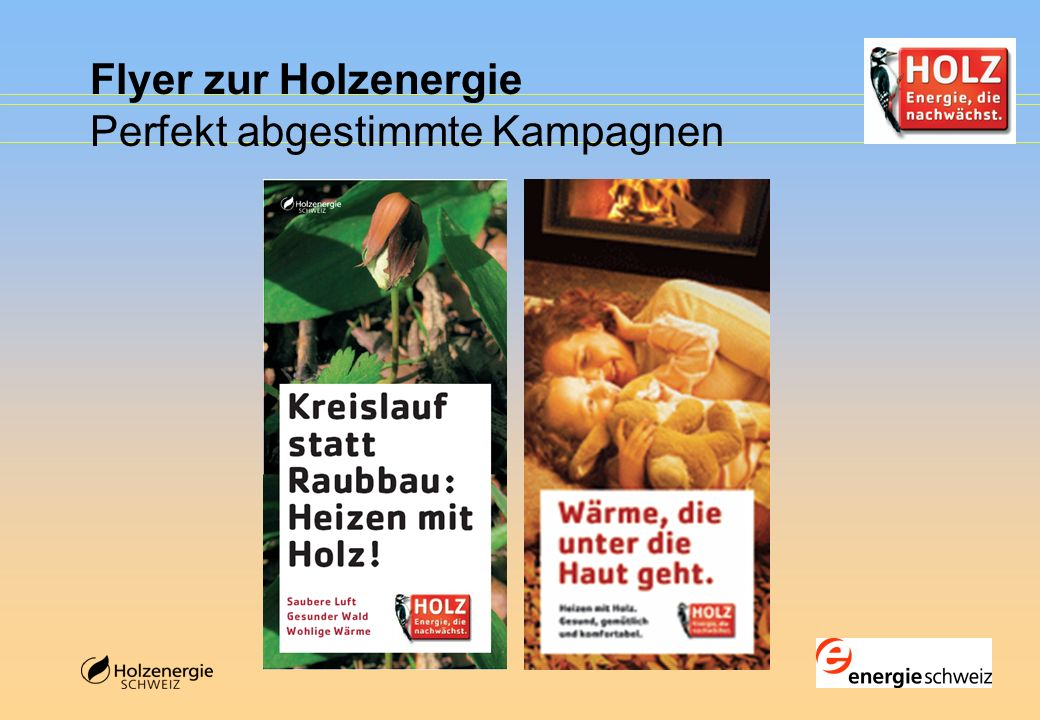Flyer zur Holzenergie Perfekt abgestimmte Kampagnen