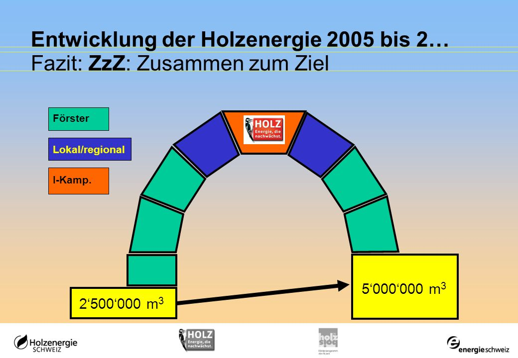 Entwicklung der Holzenergie 2005 bis 2… Fazit: ZzZ: Zusammen zum Ziel