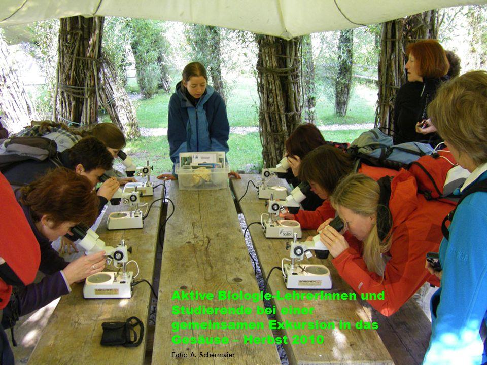Aktive Biologie-LehrerInnen und Studierende bei einer gemeinsamen Exkursion in das Gesäuse – Herbst 2010