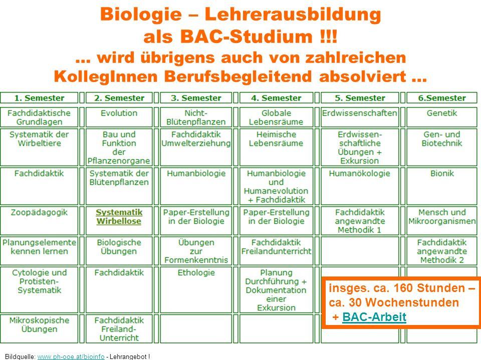 Biologie – Lehrerausbildung als BAC-Studium