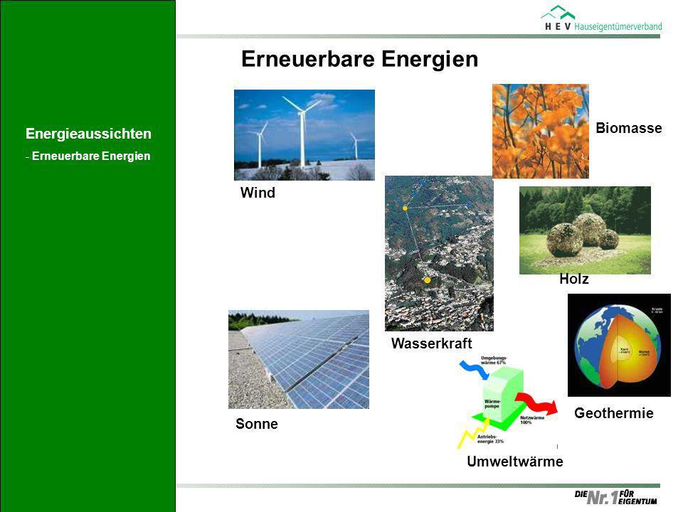 Erneuerbare Energien Biomasse Energieaussichten Wind Holz Wasserkraft