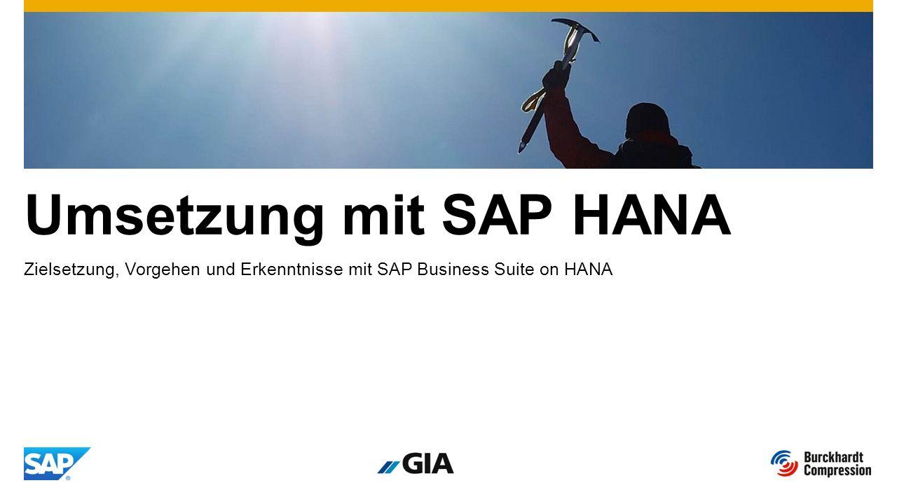 Umsetzung mit SAP HANA Zielsetzung, Vorgehen und Erkenntnisse mit SAP Business Suite on HANA
