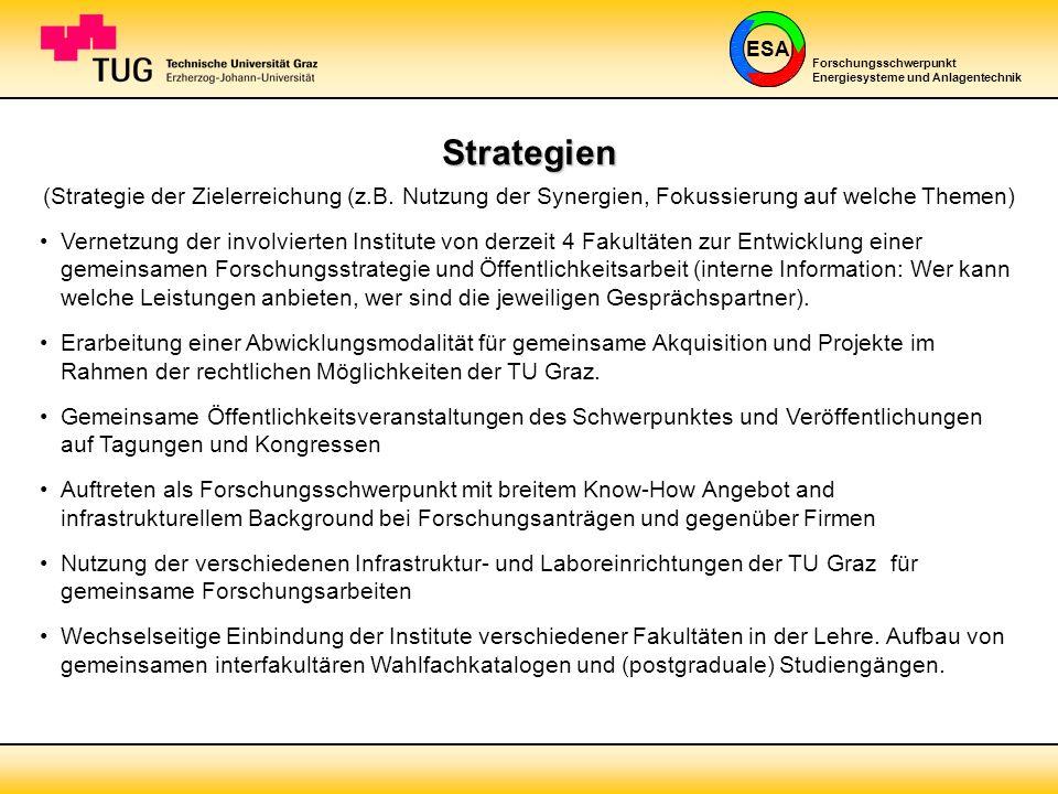 Strategien (Strategie der Zielerreichung (z.B. Nutzung der Synergien, Fokussierung auf welche Themen)