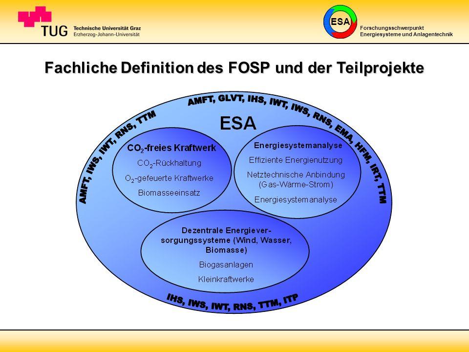 Fachliche Definition des FOSP und der Teilprojekte