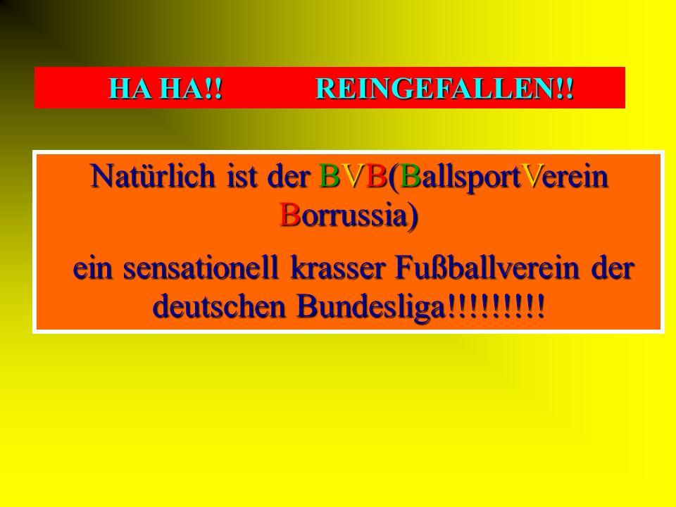 Natürlich ist der BVB(BallsportVerein Borrussia)