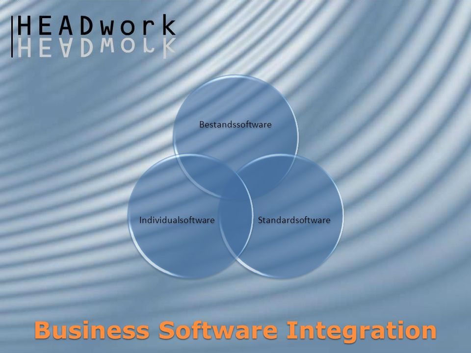 Business Software Integration