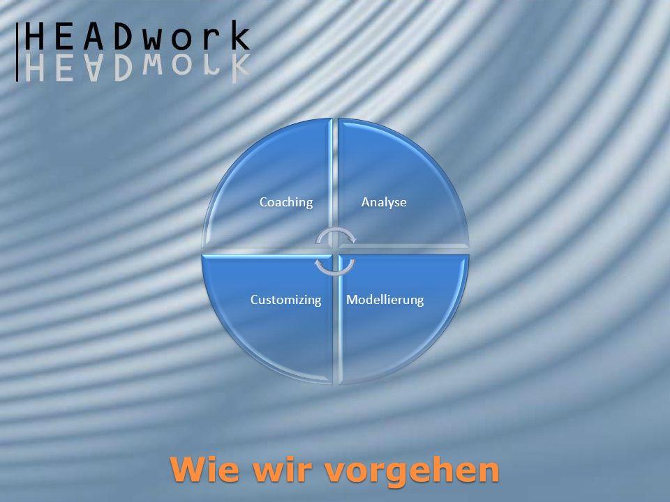 Coaching Analyse Modellierung Customizing Wie wir vorgehen
