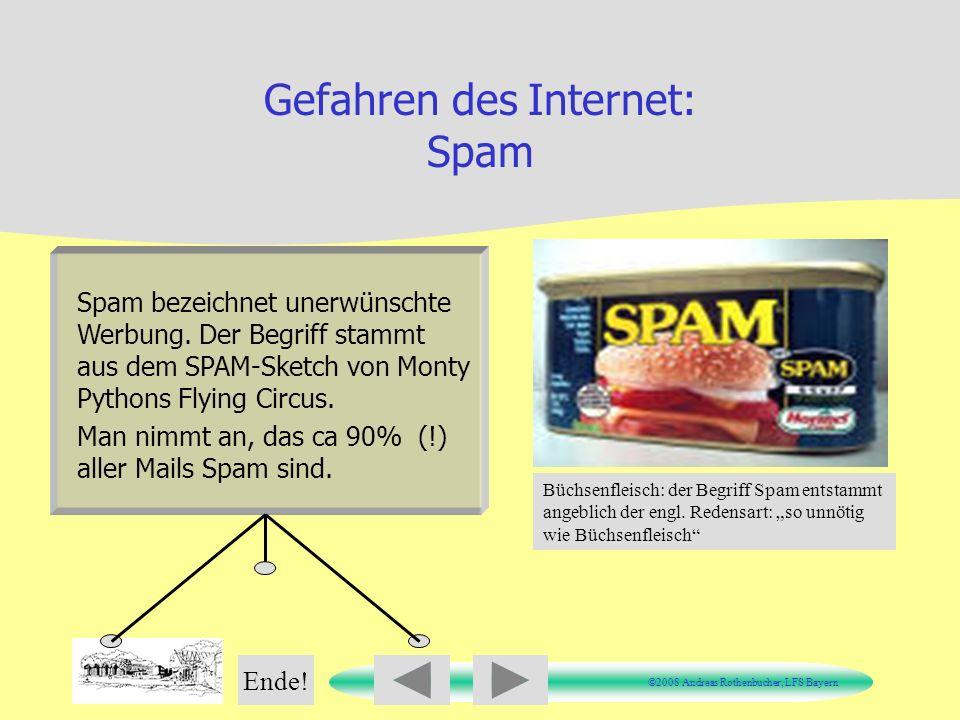 Gefahren des Internet: Spam