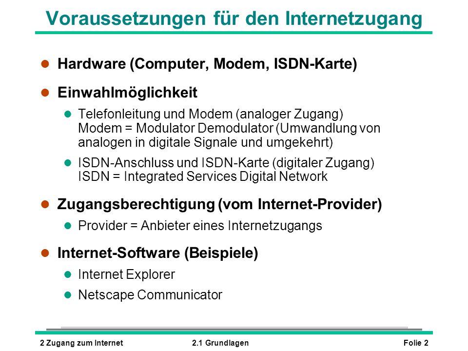 Voraussetzungen für den Internetzugang