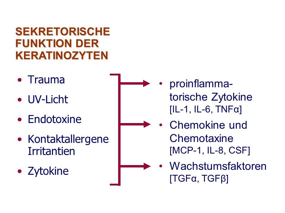 SEKRETORISCHE FUNKTION DER KERATINOZYTEN