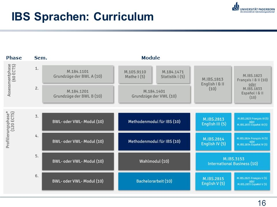 IBS Sprachen: Curriculum
