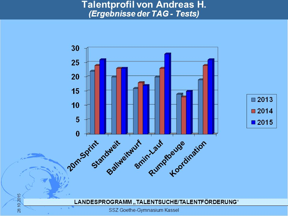 Talentprofil von Andreas H. (Ergebnisse der TAG - Tests)