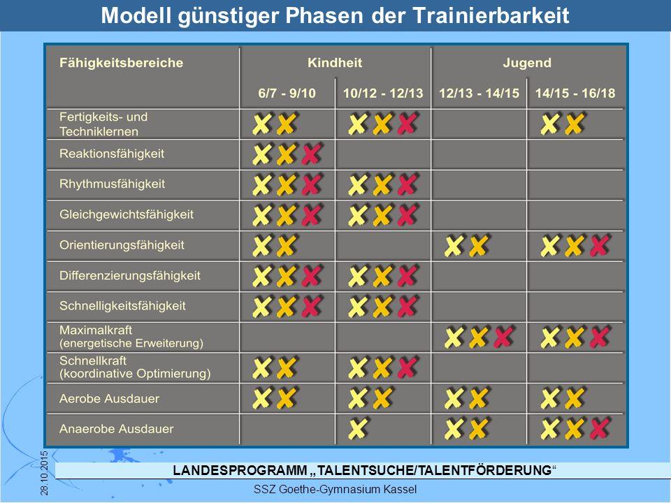 Modell günstiger Phasen der Trainierbarkeit