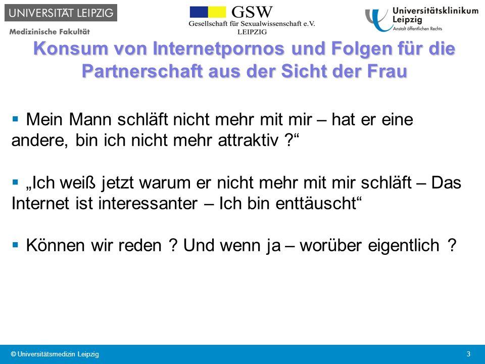 Konsum von Internetpornos und Folgen für die Partnerschaft aus der Sicht der Frau