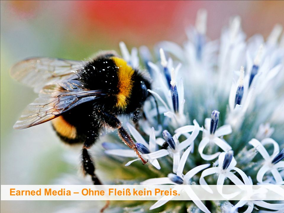 Earned Media – Ohne Fleiß kein Preis.