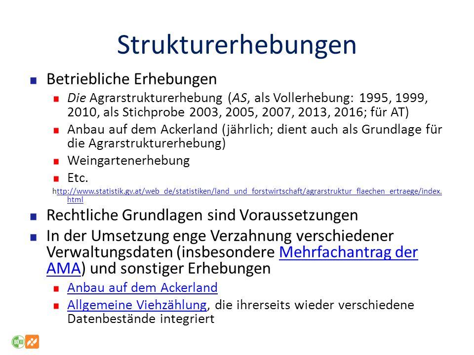 Strukturerhebungen Betriebliche Erhebungen