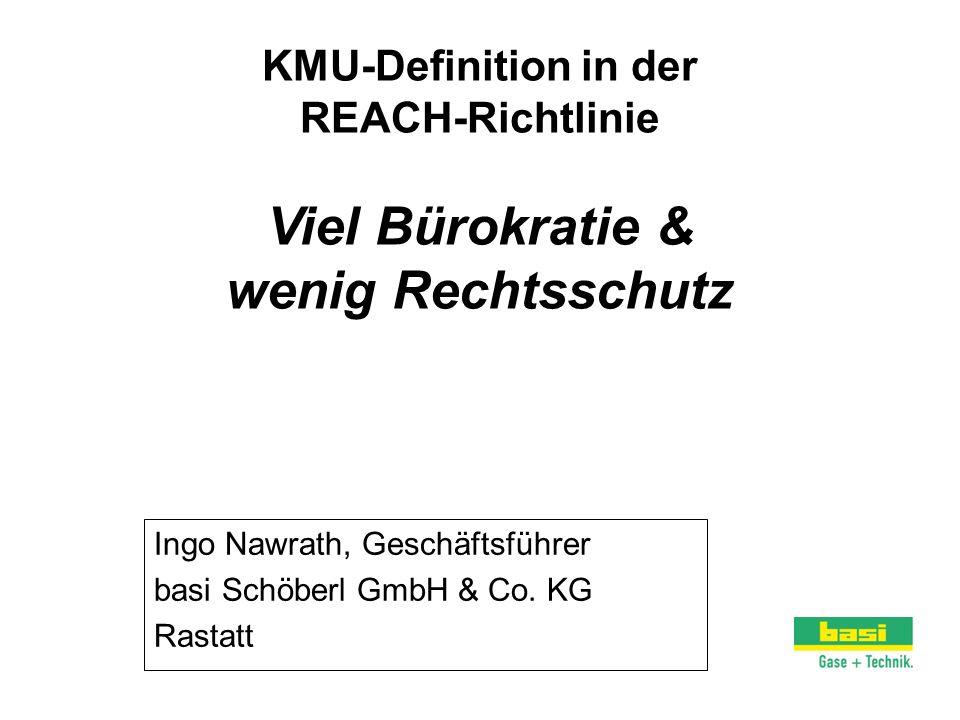 Ingo Nawrath, Geschäftsführer basi Schöberl GmbH & Co. KG Rastatt