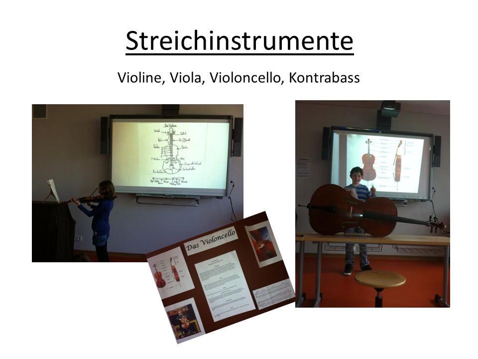 Violine, Viola, Violoncello, Kontrabass