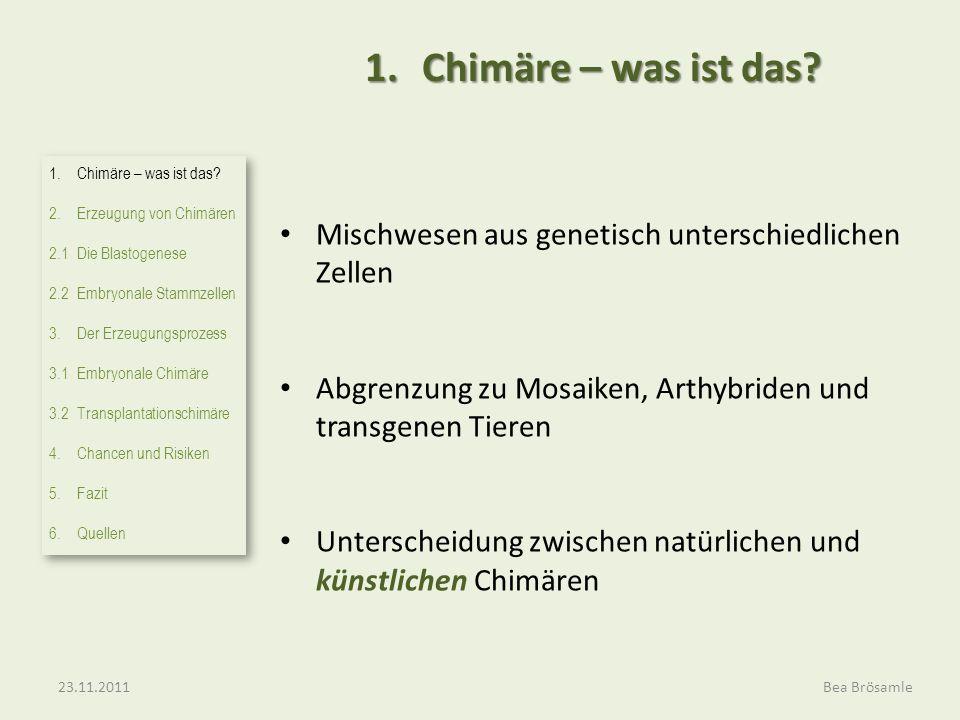 1. Chimäre – was ist das Mischwesen aus genetisch unterschiedlichen Zellen. Abgrenzung zu Mosaiken, Arthybriden und transgenen Tieren.