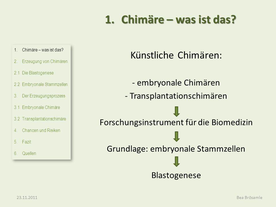 1. Chimäre – was ist das Künstliche Chimären: - embryonale Chimären