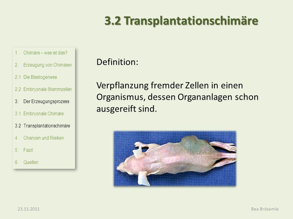 3.2 Transplantationschimäre