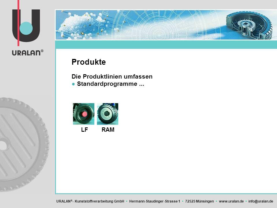 Produkte Die Produktlinien umfassen ● Standardprogramme ... LF RAM