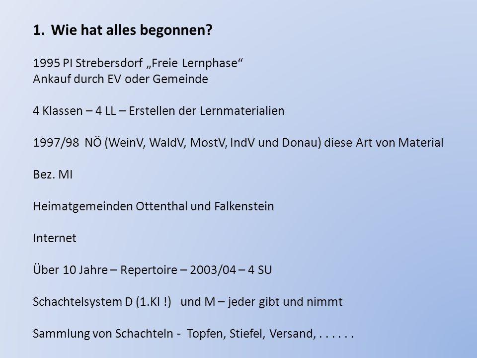 """Wie hat alles begonnen 1995 PI Strebersdorf """"Freie Lernphase"""