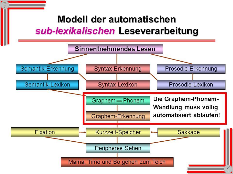 Modell der automatischen sub-lexikalischen Leseverarbeitung