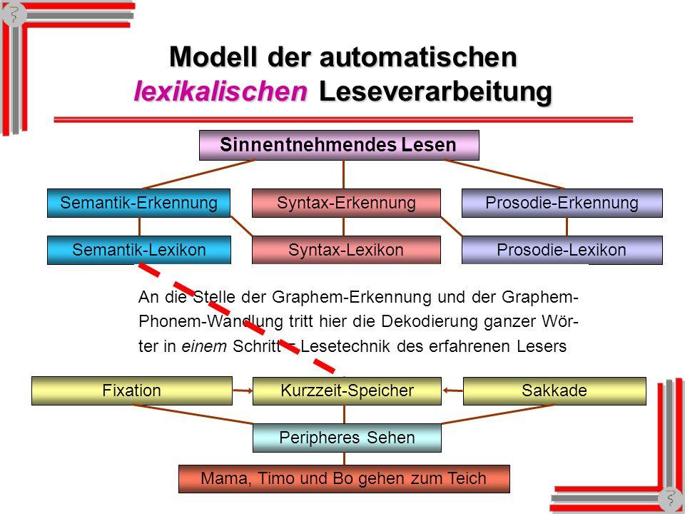 Modell der automatischen lexikalischen Leseverarbeitung