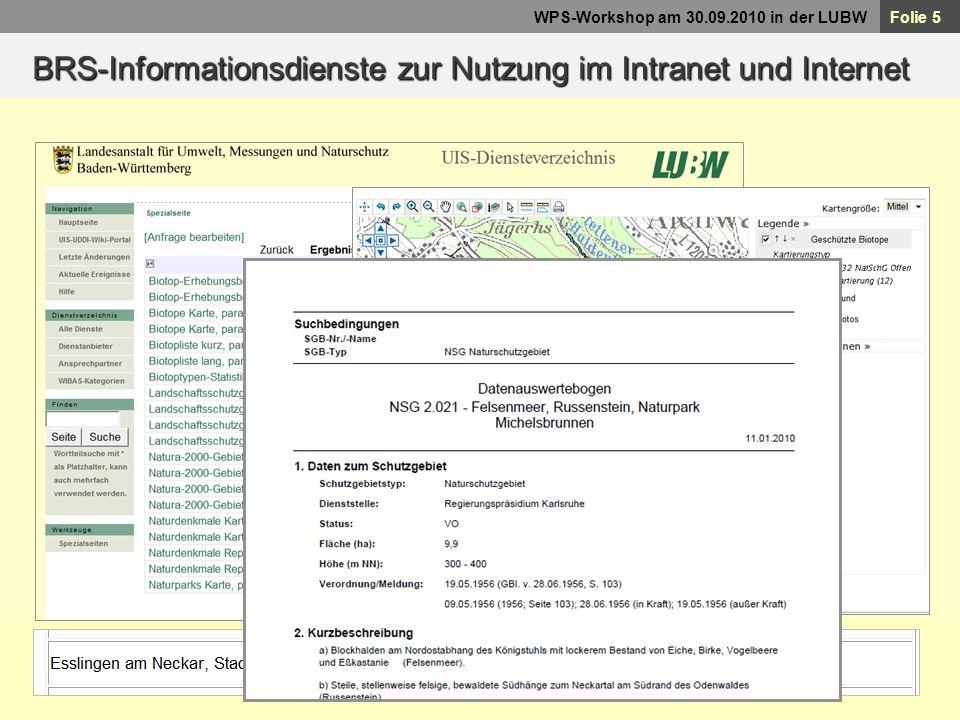 BRS-Informationsdienste zur Nutzung im Intranet und Internet