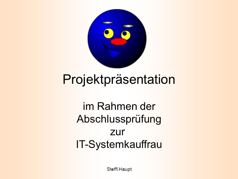 Projektpräsentation im Rahmen der Abschlussprüfung zur