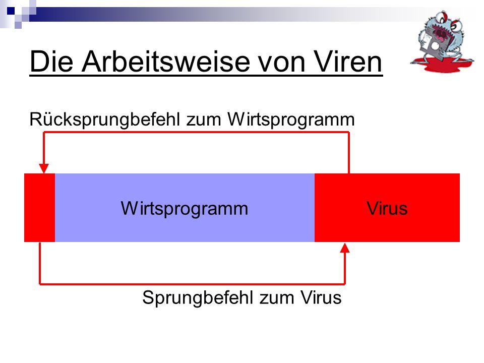 Die Arbeitsweise von Viren