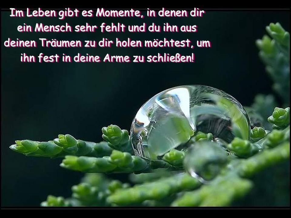 Im Leben gibt es Momente, in denen dir ein Mensch sehr fehlt und du ihn aus deinen Träumen zu dir holen möchtest, um ihn fest in deine Arme zu schließen!