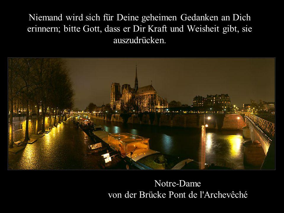 Notre-Dame von der Brücke Pont de l Archevêché