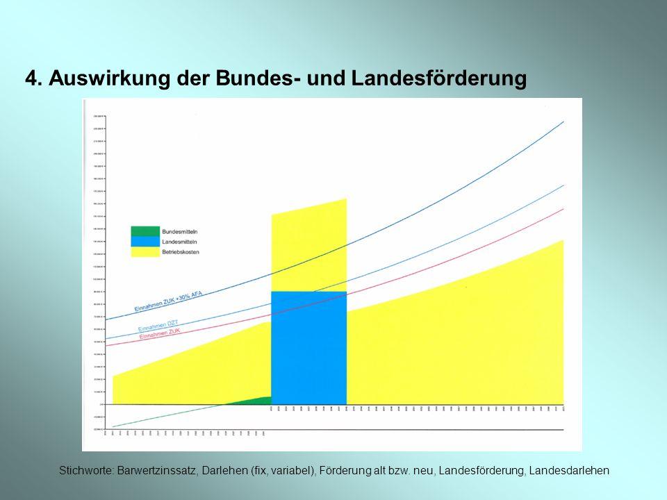 4. Auswirkung der Bundes- und Landesförderung