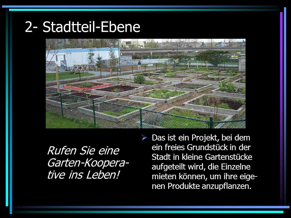 2- Stadtteil-Ebene Rufen Sie eine Garten-Koopera- tive ins Leben!