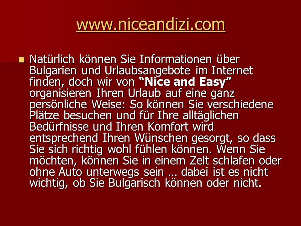 www.niceandizi.com