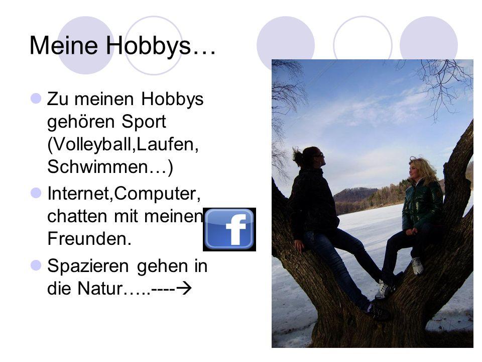 Meine Hobbys… Zu meinen Hobbys gehören Sport (Volleyball,Laufen, Schwimmen…) Internet,Computer, chatten mit meinen Freunden.