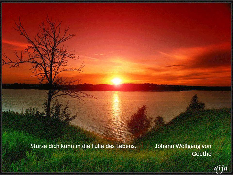 Stürze dich kühn in die Fülle des Lebens. Johann Wolfgang von Goethe
