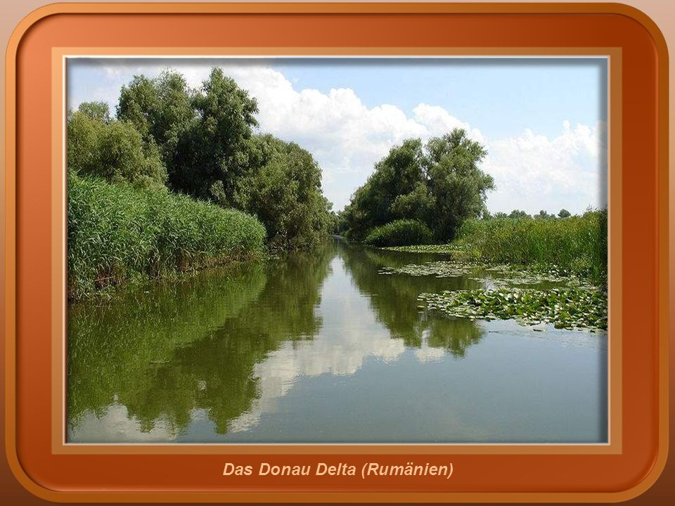 Das Donau Delta (Rumänien)