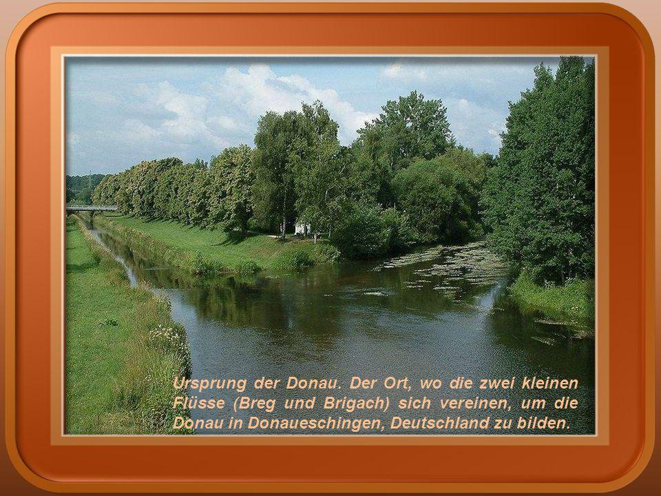 Ursprung der Donau.