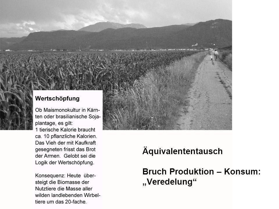 """Äquivalententausch Bruch Produktion – Konsum: """"Veredelung"""