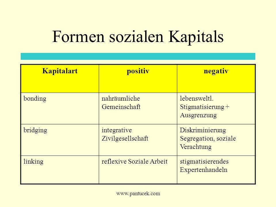 Formen sozialen Kapitals