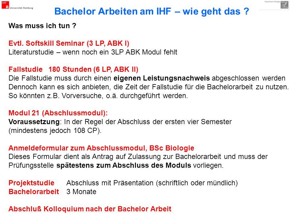 Bachelor Arbeiten am IHF – wie geht das